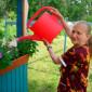 Любытинский дом-интернат уход за растениями