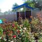 Лабинский дом-интернат сад
