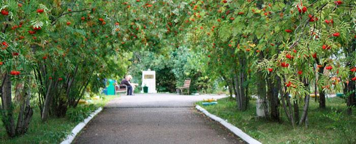 Территория Красноярского дома-интерната для инвалидов