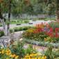 Клумба с цветами в интернате