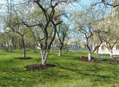 ГУТО «Одоевский дом-интернат для престарелых и инвалидов»