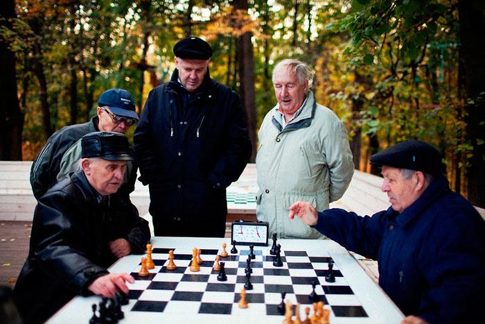 Игра в шахматы стариков