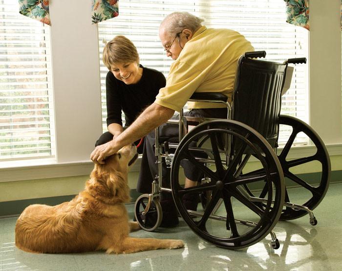 Канистерапия для престарелых
