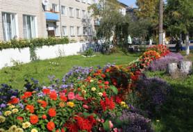 ГБУСО Опочецкий дом-интернат для престарелых и инвалидов