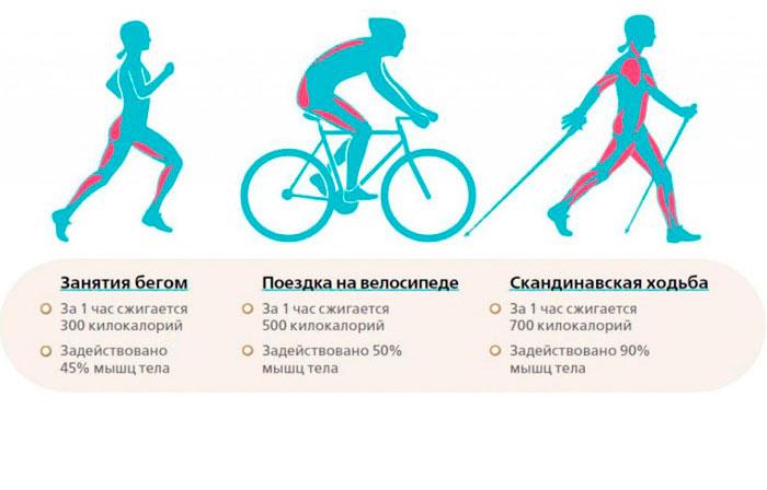 Польза бега, езды на велосипеде и скандинавской ходьбы