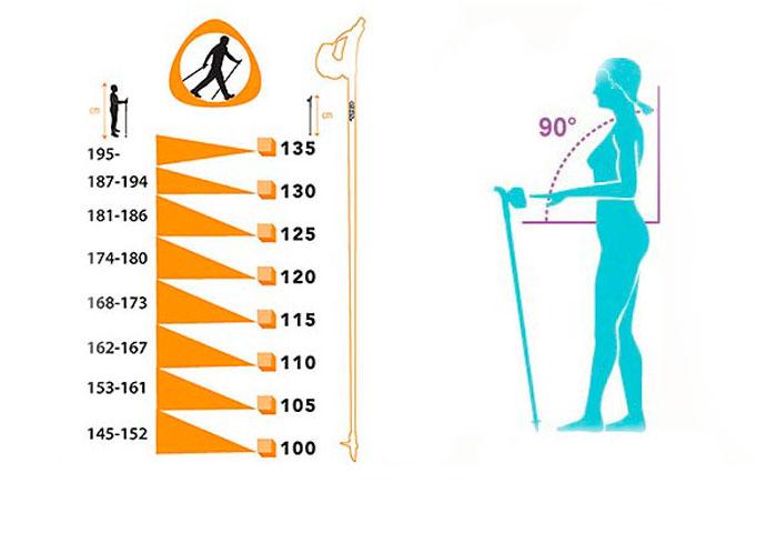 Скандинавская ходьба как сделать палки 236