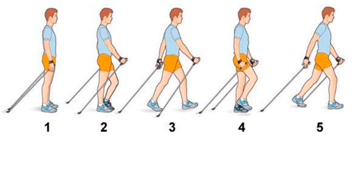 Техника ходьбы с палками