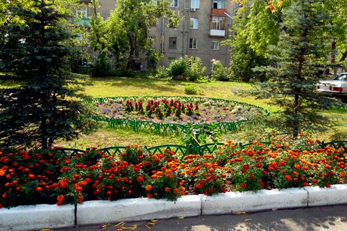 Территория Новосибирского геронтологического центра