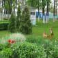 Территория Орловского геронтологического центра