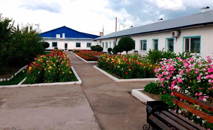 Территория Усть-Ивановского психоневрологического интерната