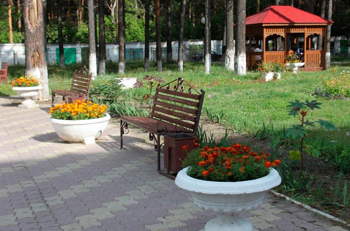 Территория пансионата «Кедр» Канск