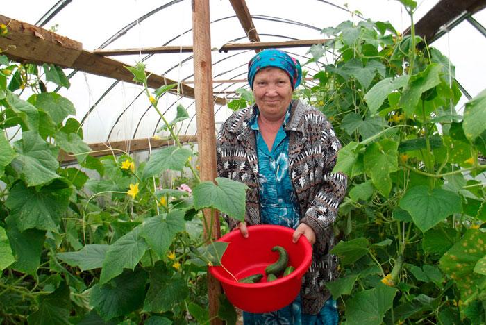 Трудотерапия жильцов Кудымкарского дома-интерната для престарелых и инвалидов