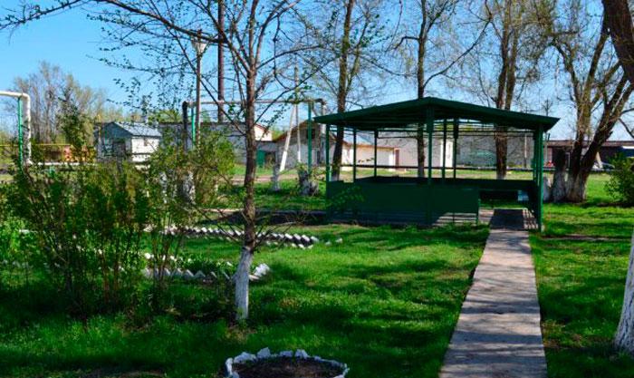 Территория Потаповского пансионата для инвалидов