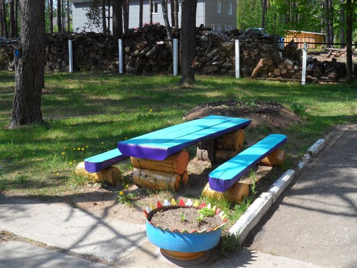 Территория Студенецкого дома-интерната для престарелых и инвалидов