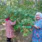 Жильцы Заречнского дома-интерната для престарелых