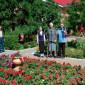Прогулка жителей Серебряно-Прудского дома-интерната «Надежда»