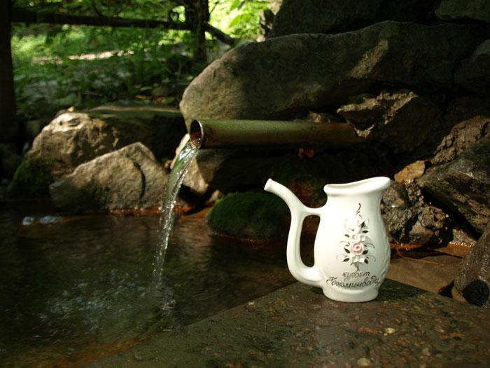 Источник минеральной воды санатория «Березовские минеральные воды»