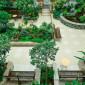 Зимний сад санатория «Синегорские минеральные воды»