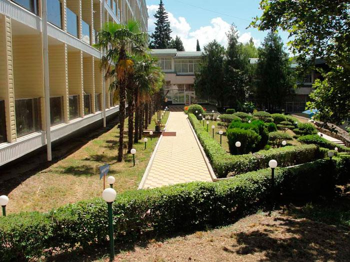 Территория санатория «Сосновый»