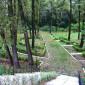 Парк в санатории «Соловьиные зори» (Курск)