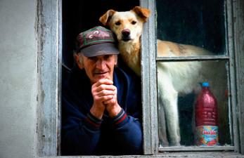 Собака - лучший компаньон для пожилого человека
