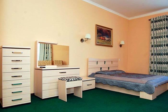 Номер люкс в санатории «Алтынай» (Сарыагаш)