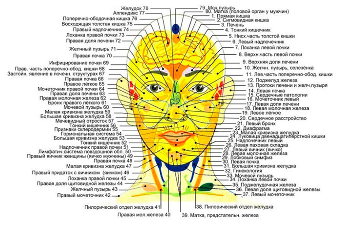 Точки воздействия на голове - методика Шиауцу