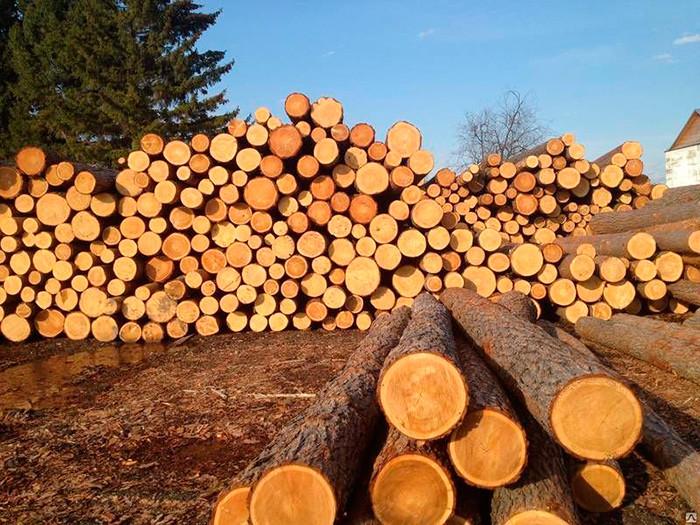 Как выписать лес на строительство дома