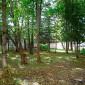 Территория пансионата для пожилых «Долголетие» в Зеленограде