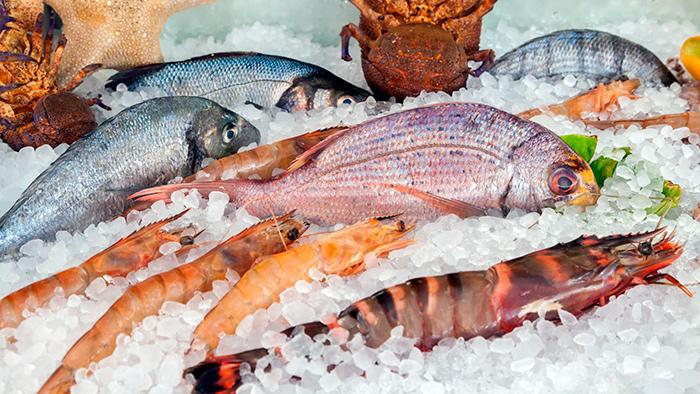 Не жирные сорта рыбы помогут восстановить изношенную хрящевую ткань