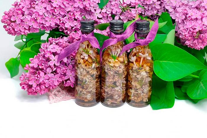 Компресс из цветков сирени поможет восстановить хрящевую ткань