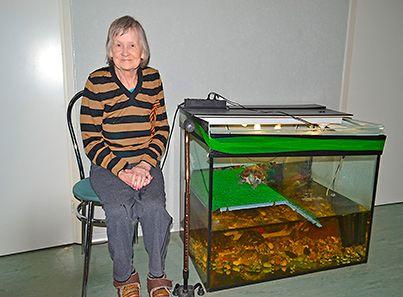 Аквариум в пансионате для пожилых людей «Семейные ценности»